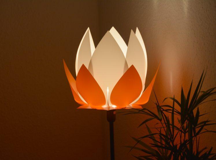 fol-lotus-ornage-01-hp